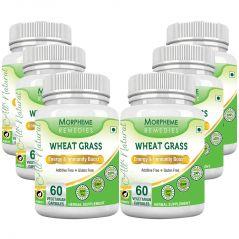 Morpheme Wheatgrass Supplements 500mg Extract 60 Veg Caps - 6 Bottles