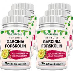 Morpheme Garcinia Forskolin 500mg Extract 60 Veg Caps - 6 Bottles