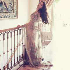Net Sarees - Palash fashion's Chiku Color embroidered Fancy Designer Saree