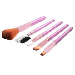 5 Pcs Luxurious Functional Make up Brush Cosmetic Set Kit Case (Code - MK BR 06 A)