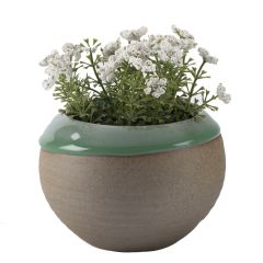 Green & Beige Glossy Finish Planter Pot