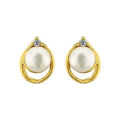 Sri Jagdamba Pearls Glity Pearl Earrings Code Jpjun 16 218