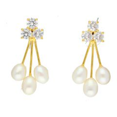 Berry Drop Earrings By Sri Jagdamba Pearls ( JPJUN-18-203_2018 )