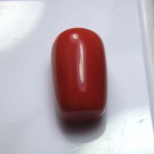 Top Grade 17.28cts Certified Red Coral/moonga