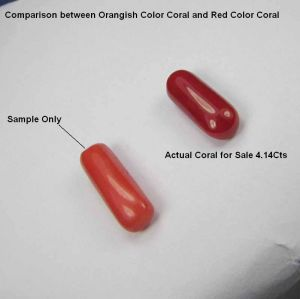 Top Grade 4.14cts Certified Red Coral/moonga