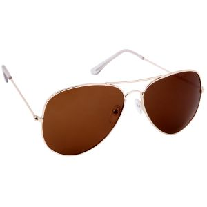 Nectar Brown Aviator Sunglasses For Men