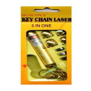 Laser Light Key Chain Pointer