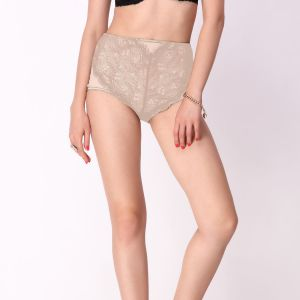 Triveni,Lime,La Intimo,Jharjhar,Cloe,Estoss Women's Clothing - Cloe High Waist Lace Brief In Beige PN0173R19