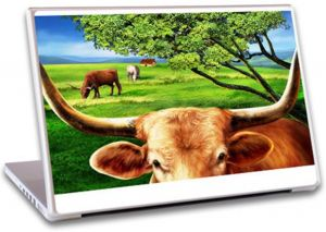 Laptop Notebook Skin Lowest Price Free Shipping- Lp0011