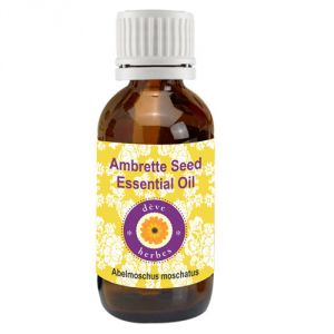 Pure Ambrette Seed Essential Oil 2ml (abelmoschus Moschatus)