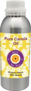 Pure Canola Oil 630ml - Brassica Napus 100% Natural Cold Pressed
