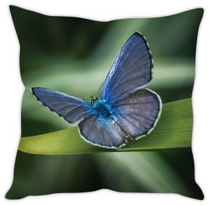 Stybuzz Blue Butterfly Cushion Cover