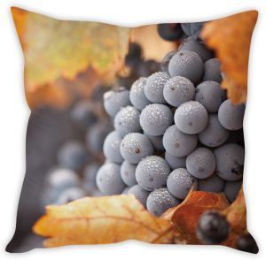 Stybuzz Grey Berries Cushion Cover