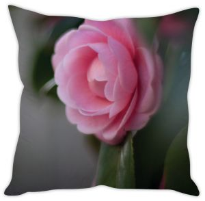 Stybuzz Pink Rose Cushion Cover