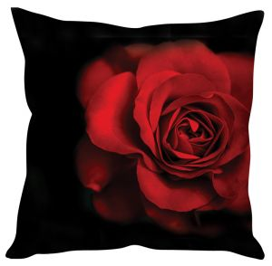 Stybuzz Red Rose Black Cushion Cover