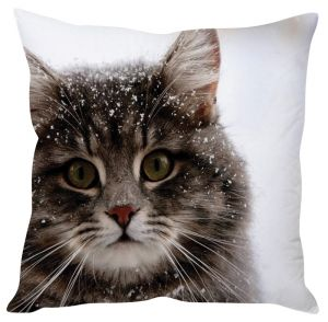 Stybuzz Cat In Snow White Cushion Cover