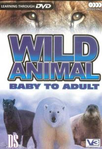 Wild Animal Baby To Adult (4 DVD Pack)