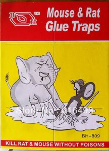 Buy 1 Get 1 Free Mouse Glue Pad - Kill Rat & Mouse Without Poisons