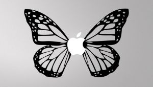 10 AM Butterfly Decal ( Dbub3 )