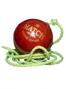Priya Sports 2837a Cricket Ball - Size- 5, Diameter- 2.24 Cm