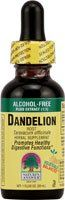 Natures Answer Dandelion Root, Alcohol Free 1 Oz.