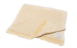 Pickles Chevron Stripe Baby Blanket, Yellow, 30 Inches X 40