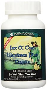Free & Easy Wanderer *plus* Economy Size, 1000 Ct, Plum Flower