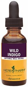 Herb Pharm Wild Indigo Root Extract - 1 Ounce