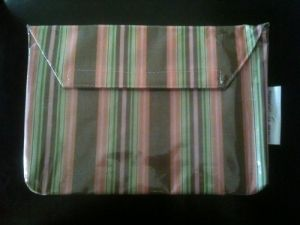 Sam & Bellie Laminated Diaper Clutch Striped
