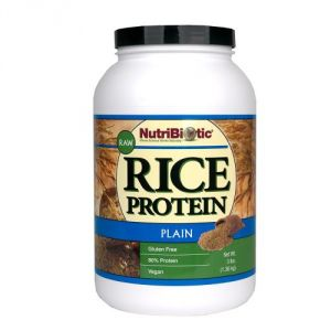 Nutribiotic Rice Protein Powder Raw Vegan Plain -- 3 Lbs