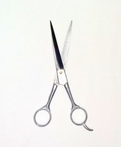 Shalimar - Hair Cutting Barber Salon Right Handed Scissors