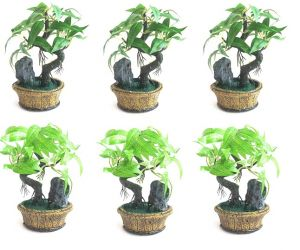 Artificial Bonsai Wild Plant With Marble Base Set Of 6 PCs
