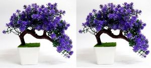 Artificial Bonsai Wild Plant With Base Set Of 2 PCs