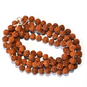 Rudraksh Mala (large Size) By Pandit Nm Shrimali