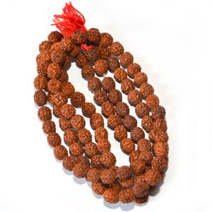 Rudraksha Mala (medium Size) By Pandit Nm Shrimali