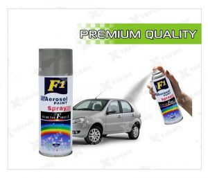 Car Auto Multi Purpose Lacquer Spray Paint Silver