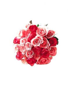 Gifts Valley 24 Pink Roses Bunch Gift Items