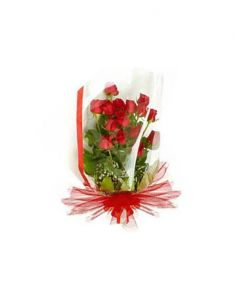 Gifts Valley 12 Red Roses Bunch Gift Items