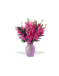 Gifts Valley 12 Orchids In A Glass Vase Gift Items