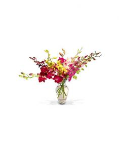 Gifts Valley 8 Pink And Yellow Orchids In A Glass Vase Gift Items