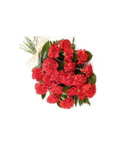 Gifts Valley 24 Red Carnation Gift Items