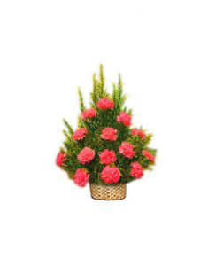 Gifts Valley 15 Red Carnations In A Basket Gift Items