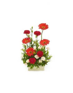 Gifts Valley Wonderfull Gerbera Gift Items