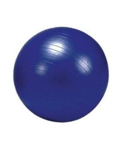Sir-g Exercise Ball With Foot Pump 95 Cm