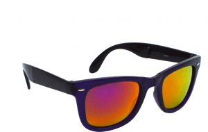 Red Knot Wayfarer Sunglasses Violet