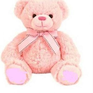Pink Teddy Bear Big Full Size Huggable