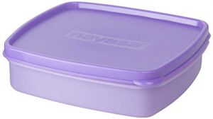 Nayasa Vital Square Plastic Lunch Box, 450ml