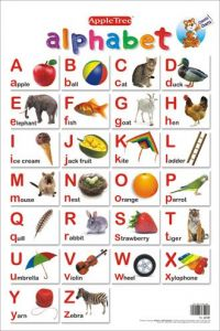 Apple Tree Alphabets Preschool Charts - 1 ( 13.5 Inch * 19.5 Inch) Wall Chart