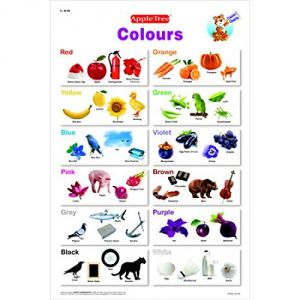 Apple Tree Colors Preschool Charts - 1 ( 13.5 Inch * 19.5 Inch) Wall Chart