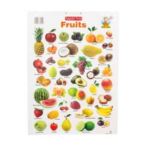 Apple Tree Fruits Preschool Charts - 1 ( 13.5 Inch * 19.5 Inch) Wall Chart